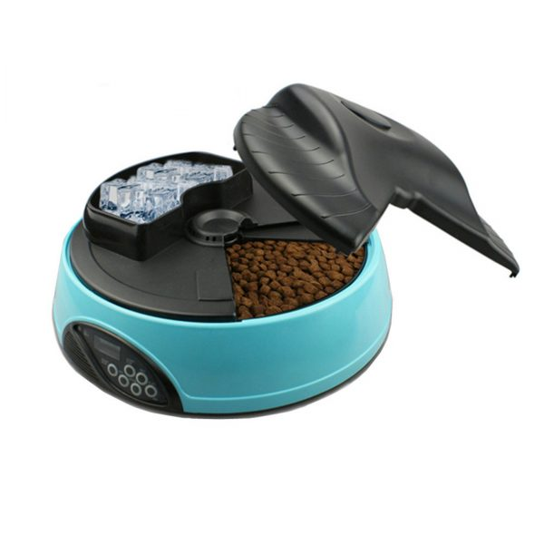Alimentador inteligente Any A5
